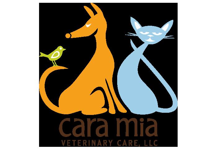 Cara Mia Logo